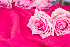 Pink  roses  on table Royalty Free Stock Photo