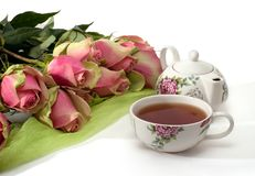Pink roses and tea. Still-life with bicoloured roses and black tea on white background Stock Image