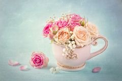 Pink roses in a teacup. On a blue background stock photography