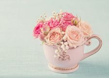 Pink roses in a teacup. On a pastel blue background stock images