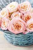 Pink roses in turquoise wicker basket Stock Photography