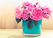 Pink roses in vase. Flowers indoor. Royalty Free Stock Photo