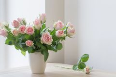Pink roses in vase stock photography