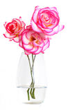 Pink roses in vase of water. With white background royalty free stock photos