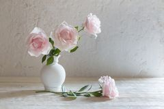 Pink roses in vase on white background. The pink roses in vase on white background stock image