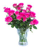 Pink roses in vase. On white background stock photo