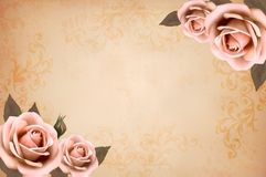 Pink roses on a vintage old paper background Stock Photography