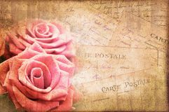 Pink roses, vintage postcard on textured background. Pink roses, vintage postcard on textured parchment background royalty free stock images
