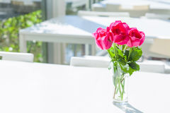 Pink roses in water glass on white table. Pink roses in water glass on white Stock Images
