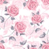 Pink roses. Watercolor floral seamless pattern 19. Hand drawn watercolor floral seamless pattern Royalty Free Stock Photos