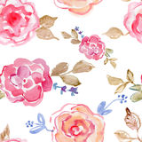 Pink roses.  watercolor hand-painted, vintage illustration Royalty Free Stock Photo