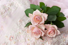 Pink roses on wedding lace (copy space). Three pink roses on wedding lace (shallow depth of field, copy space Stock Images