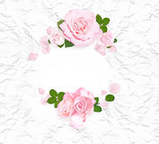Pink roses on the white crumpled paper. Rose frame. Flat lay. Top view. Closeup Stock Photos