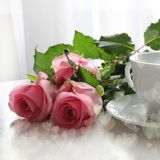 Pink roses and white cup of tea, good morning, bokeh effect hearts. Valentines`day card, blog social media post.  Stock Photos