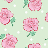 Pink roses and white dots on green seamless pattern Royalty Free Stock Photos