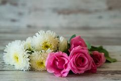 Pink Roses and White Flowers Royalty Free Stock Image