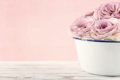 Pink roses in a white old vase Royalty Free Stock Image