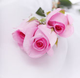 Pink roses on white silk Stock Photos