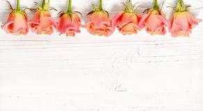Pink roses on white wood background Stock Photo