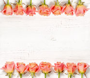 Pink roses on white wood background Stock Photos