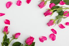 Pink roses on a white wooden background. With copyspace Stock Photo