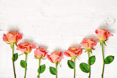 Pink roses on white wooden table Stock Photo
