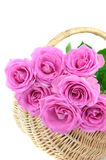 Pink Roses in a Wicker Basket Stock Photo