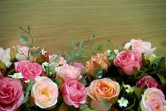 Pink roses with wood background stock photo