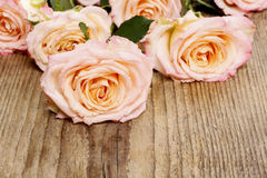 Pink roses on wooden background Royalty Free Stock Photos