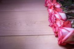 Pink roses on a wooden background Stock Image