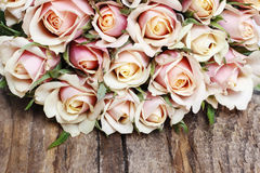 Pink roses on wooden background Royalty Free Stock Photo