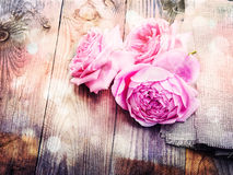 Pink roses on wooden background in vintage style Stock Photos