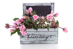 Pink roses in a wooden planter Royalty Free Stock Images