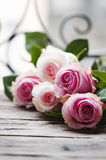 Pink roses on the wooden table Stock Photos