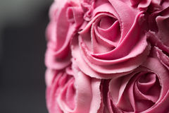Pink rosette cake Stock Images