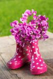 Pink rubber boots Stock Image