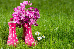 Pink rubber boots Royalty Free Stock Image