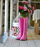 Pink rubber boots Stock Photography