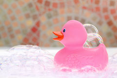 Pink rubber duck stock image