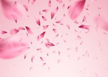 Pink sakura falling petals background. Vector illustration. EPS10 Stock Photo