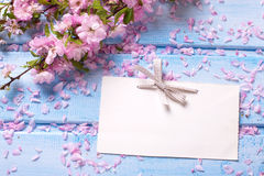 Pink sakura  flowers and empty tag on blue wooden planks. Royalty Free Stock Photography
