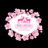 Pink sakura flowers over black Royalty Free Stock Image