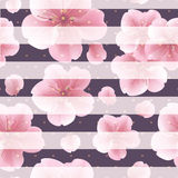 Pink sakura flowers with petals on the striped background. seamless pattern with summer flowers. Royalty Free Stock Image