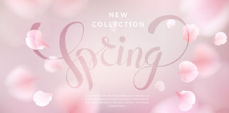 Pink sakura petals falling background. Pink sakura falling petals vector background. 3D romantic illustration with Spring text. creative soft color design for stock illustration