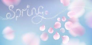 Pink sakura petals falling background Stock Images