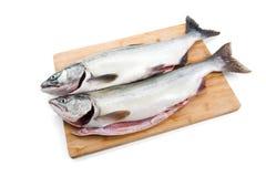 Pink Salmon Royalty Free Stock Image