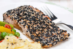 Pink salmon fillet in sesame breaded, close-up Royalty Free Stock Photos
