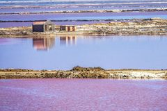 The pink salt filed. In Walvis Bay, Namibia royalty free stock photo
