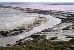 Pink salt flats Stock Photos