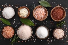 Various types of table salt. Royalty Free Stock Images